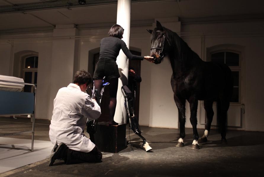 Performance, Que le cheval vive en moi
