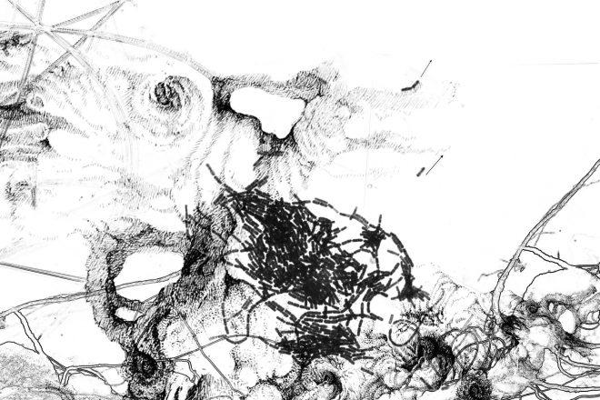 Série « Bacillus thuringiensis, (Bt) » n°4, Iglika Christova, 2017
