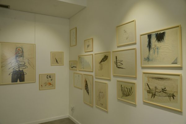 Détail de l'exposition «Récits privés», Eva Magyarosi