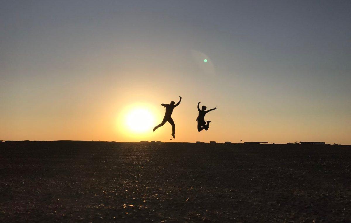 Il Cultive L Olivier la vie est une danse par olivier kaeppelin - artshebdomédias