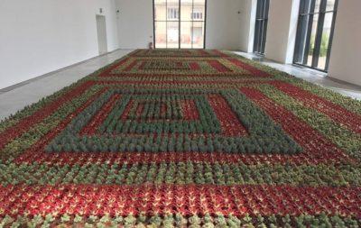 Installation signée Ghada Amer