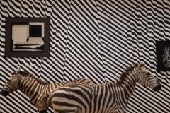 Le camouflage, c'est tout un art !
