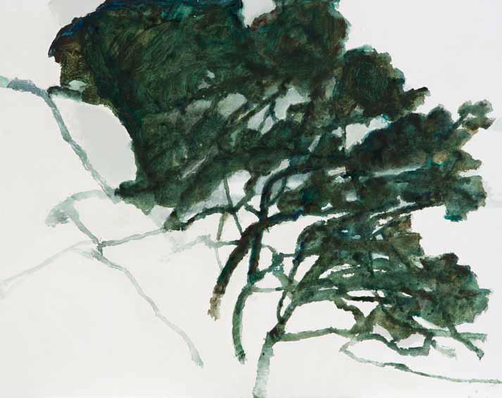 Le Grand Chêne du Val Perdu