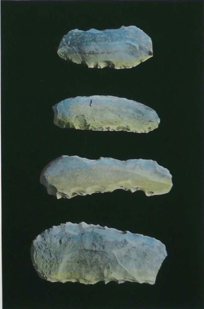 Lunes (escargotière), photographie noir et blanc rehaussée@à l'aquarelle (80 x 60 cm)