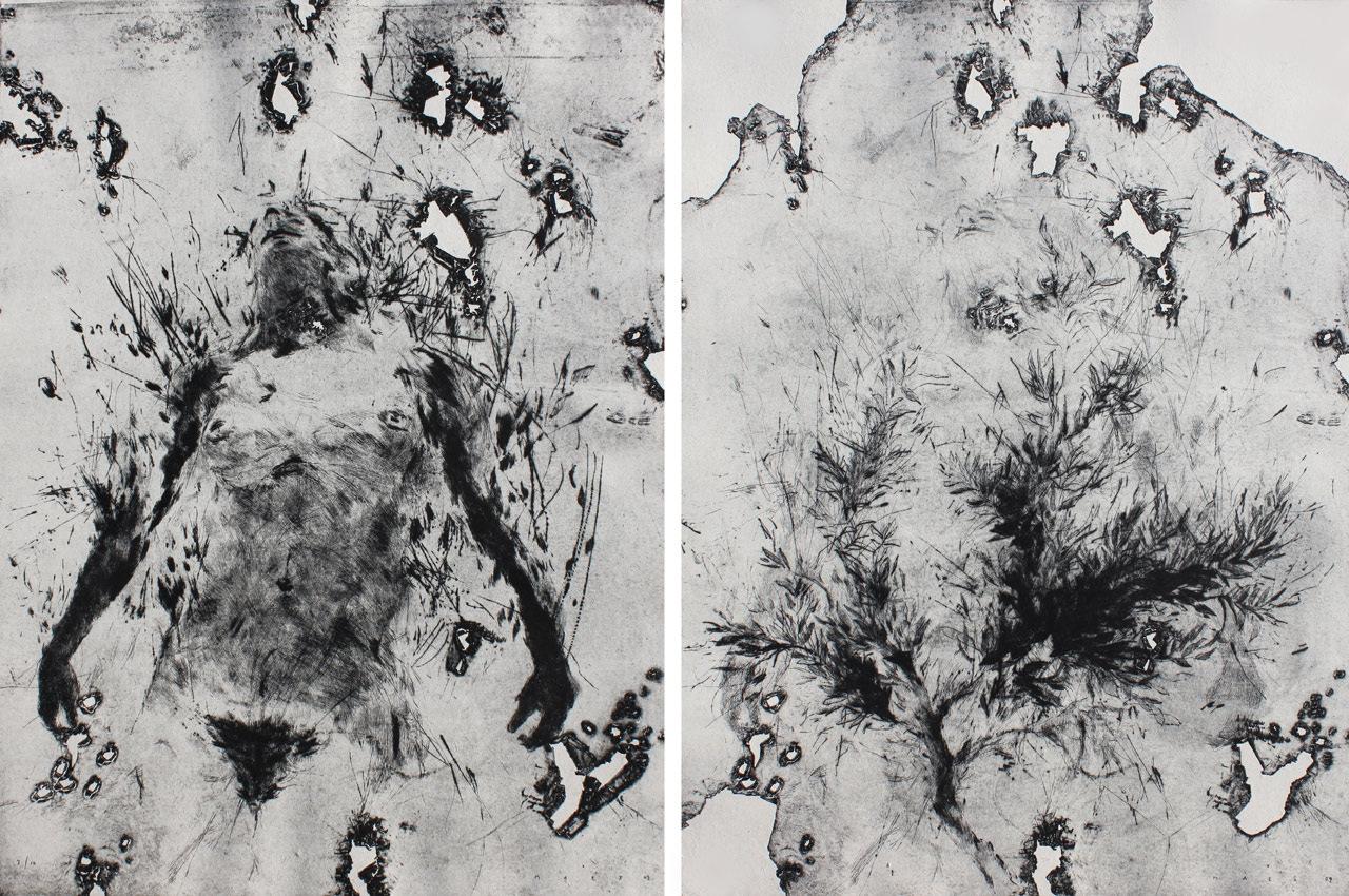 Daphné IV, pointe sèche (2 x 66 x 48.5 cm)