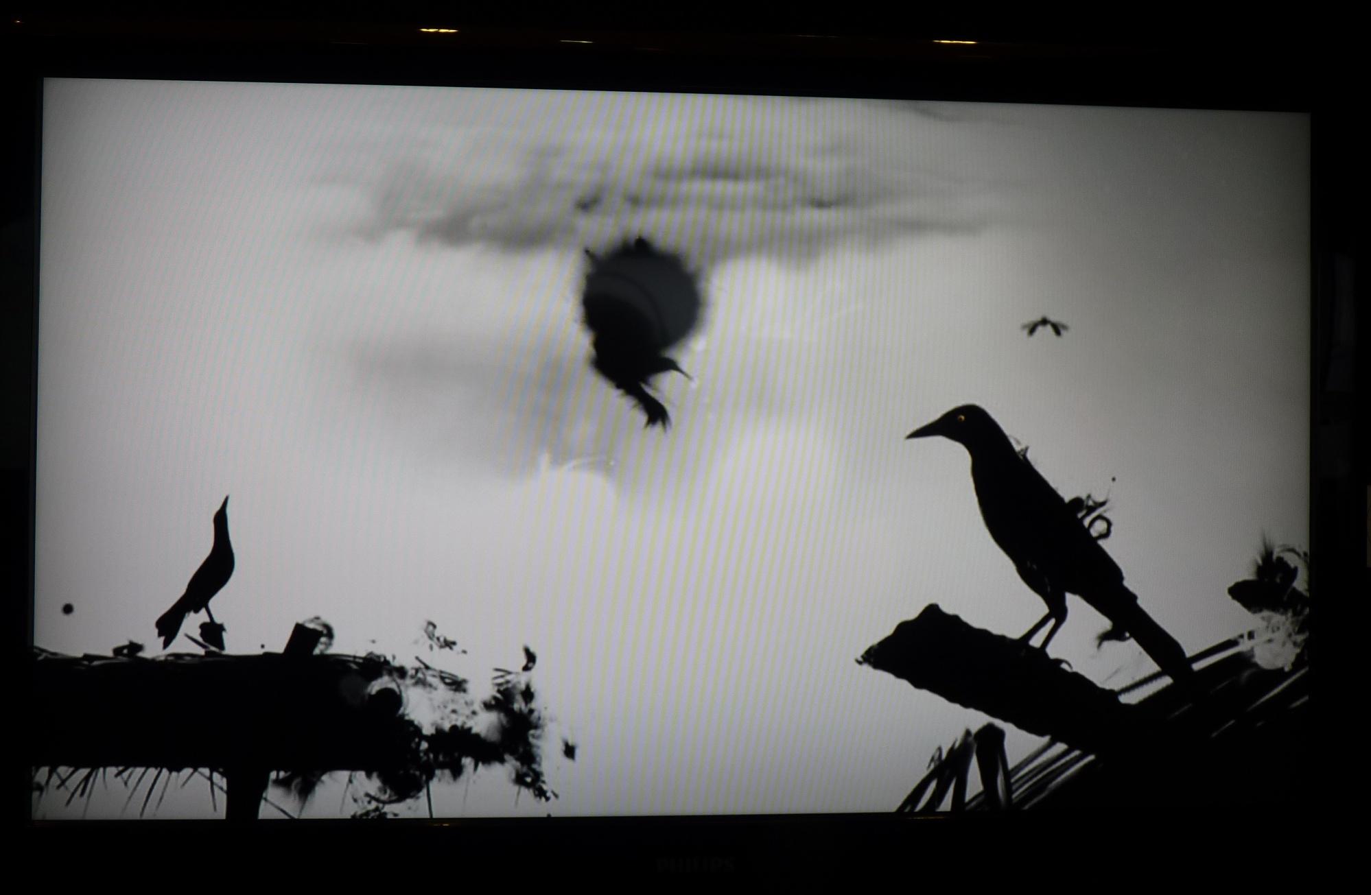 Instantes, extrait d'Implosion (boucle 2), vidéo d'animation expérimentale@(galerie Waya)