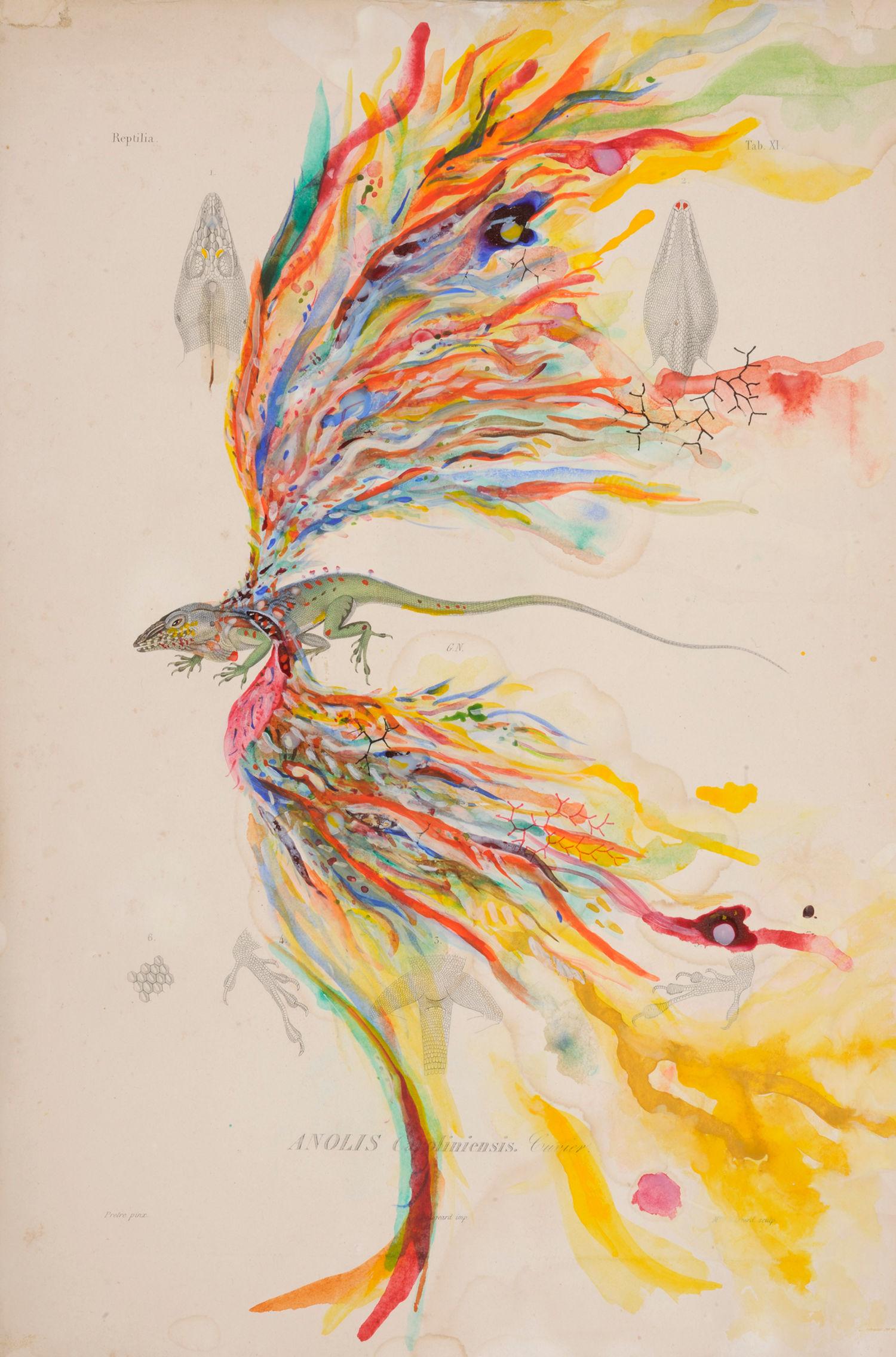 Aquarelle sur lithographie@du XIXe siècle (42 x 28 cm)
