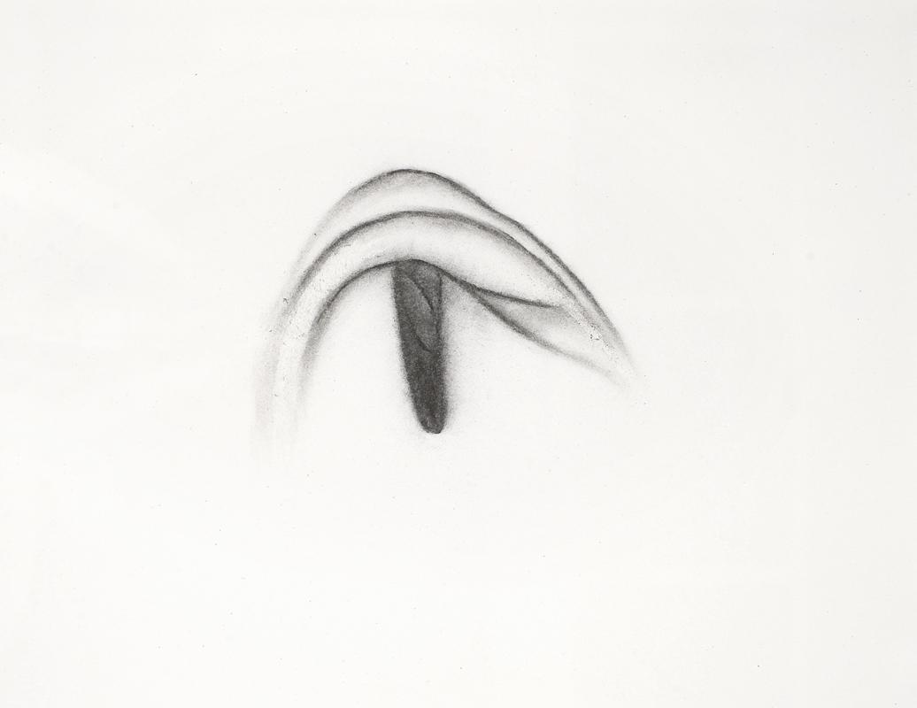 Nombril, fusain sur papier (25 x 33 cm)