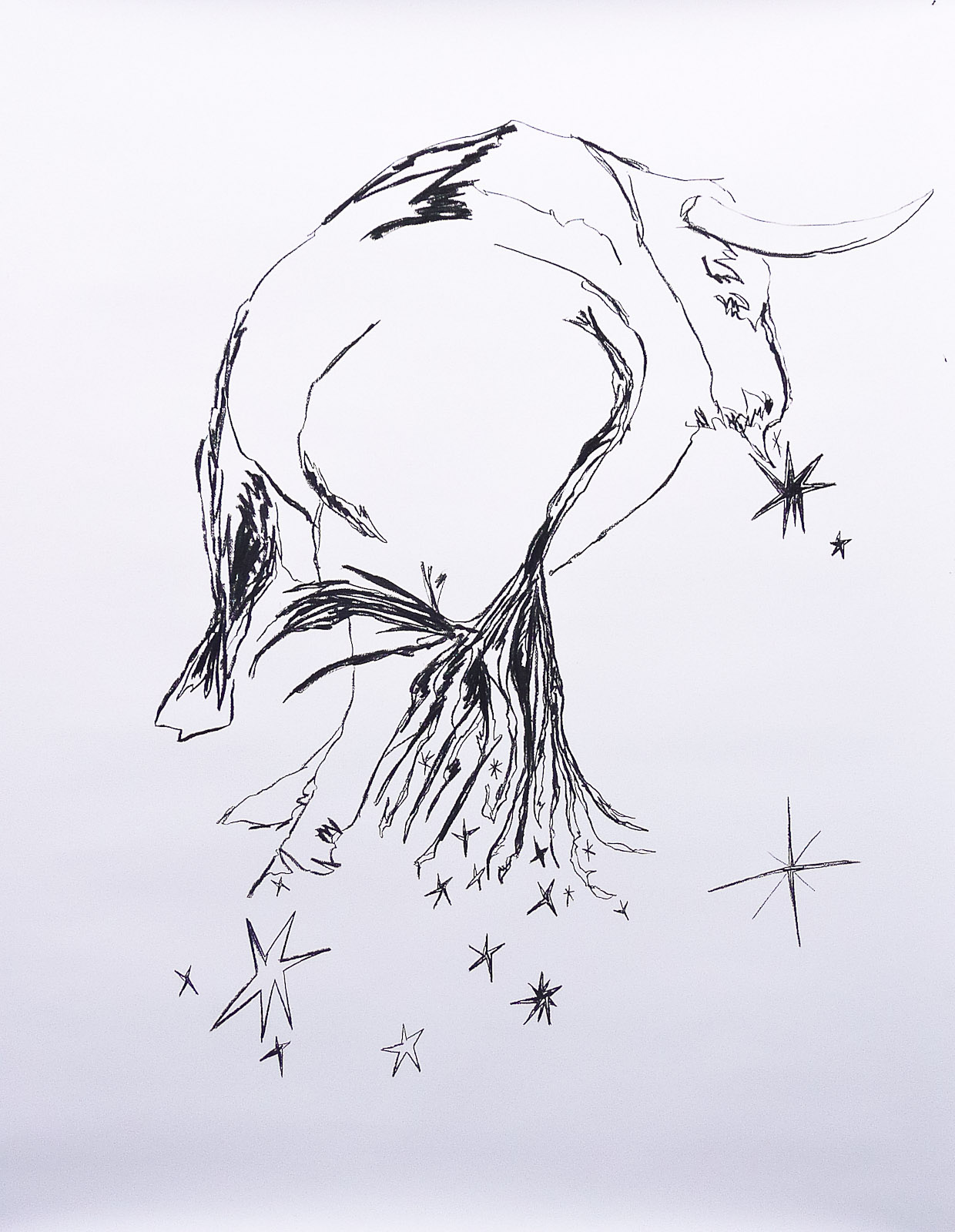 Le Taureau-Phénix