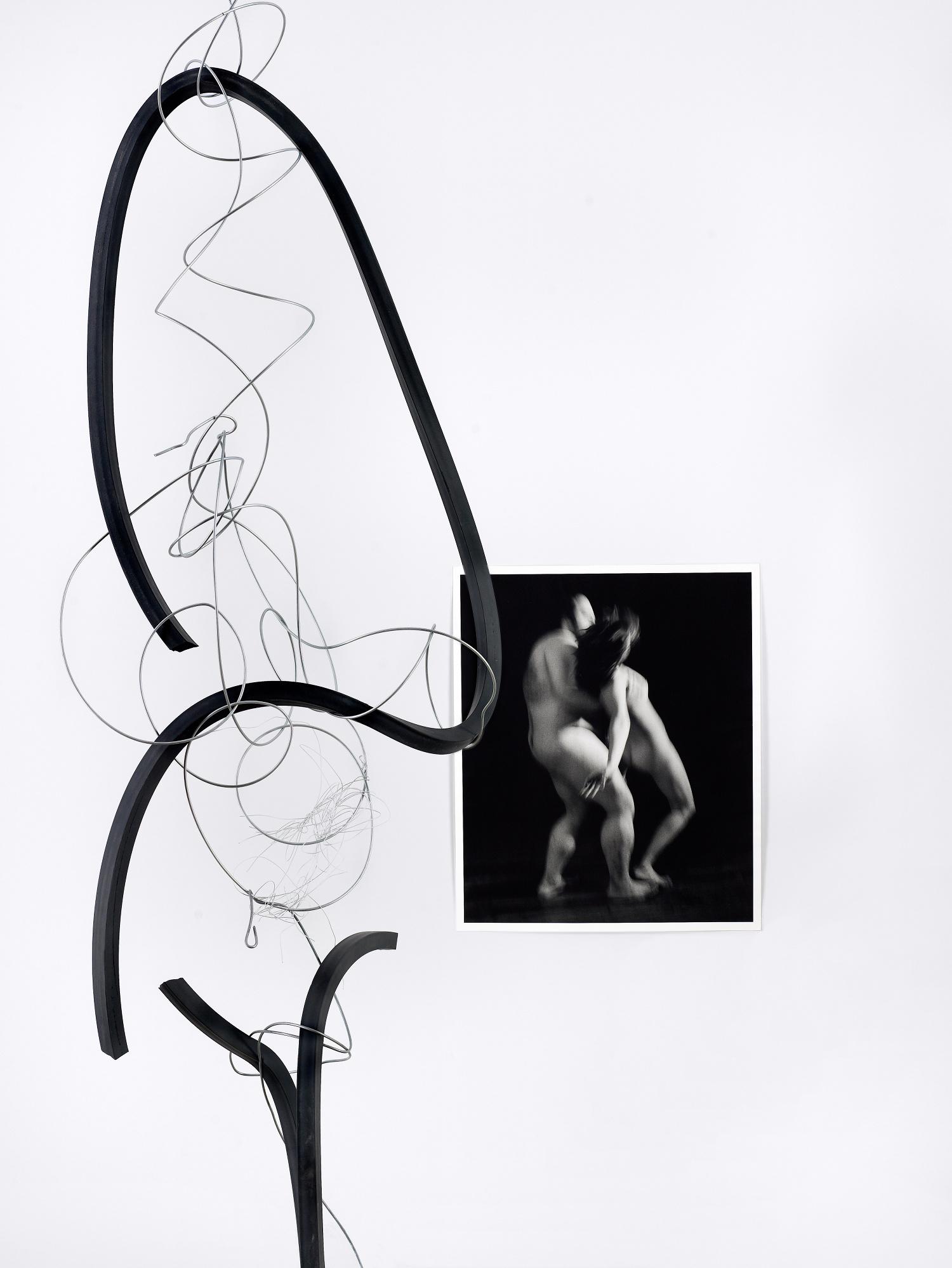 Fils de fer suspendus (2012), au premier plan, et Holly et Valéria (1998)