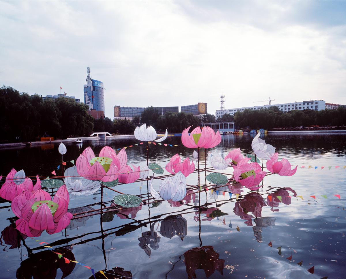 Lotus, Datong