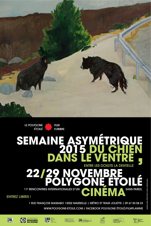 L'affiche du festival@Semaine Asymétrique ||
