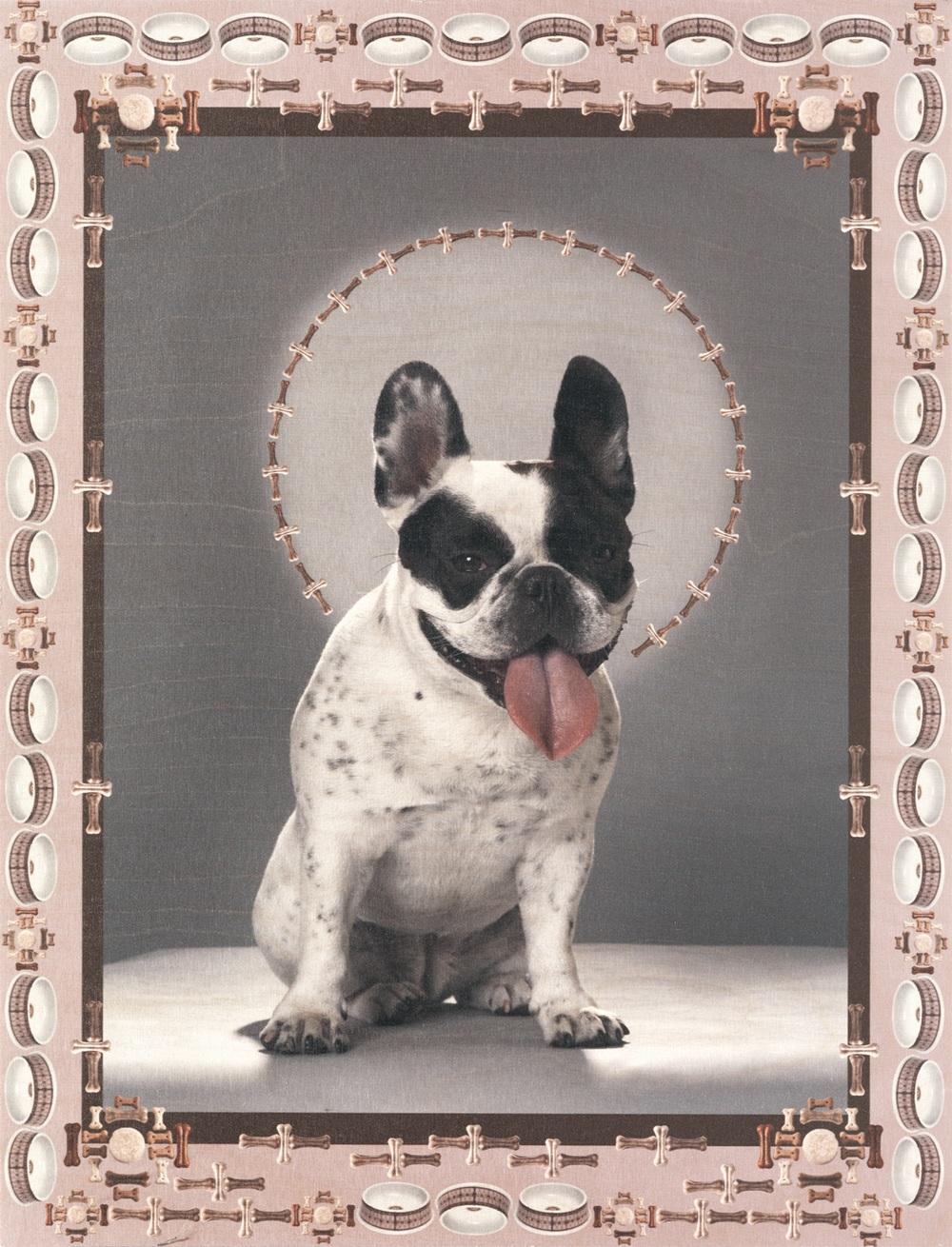 In Dog We Trust, Pelle
