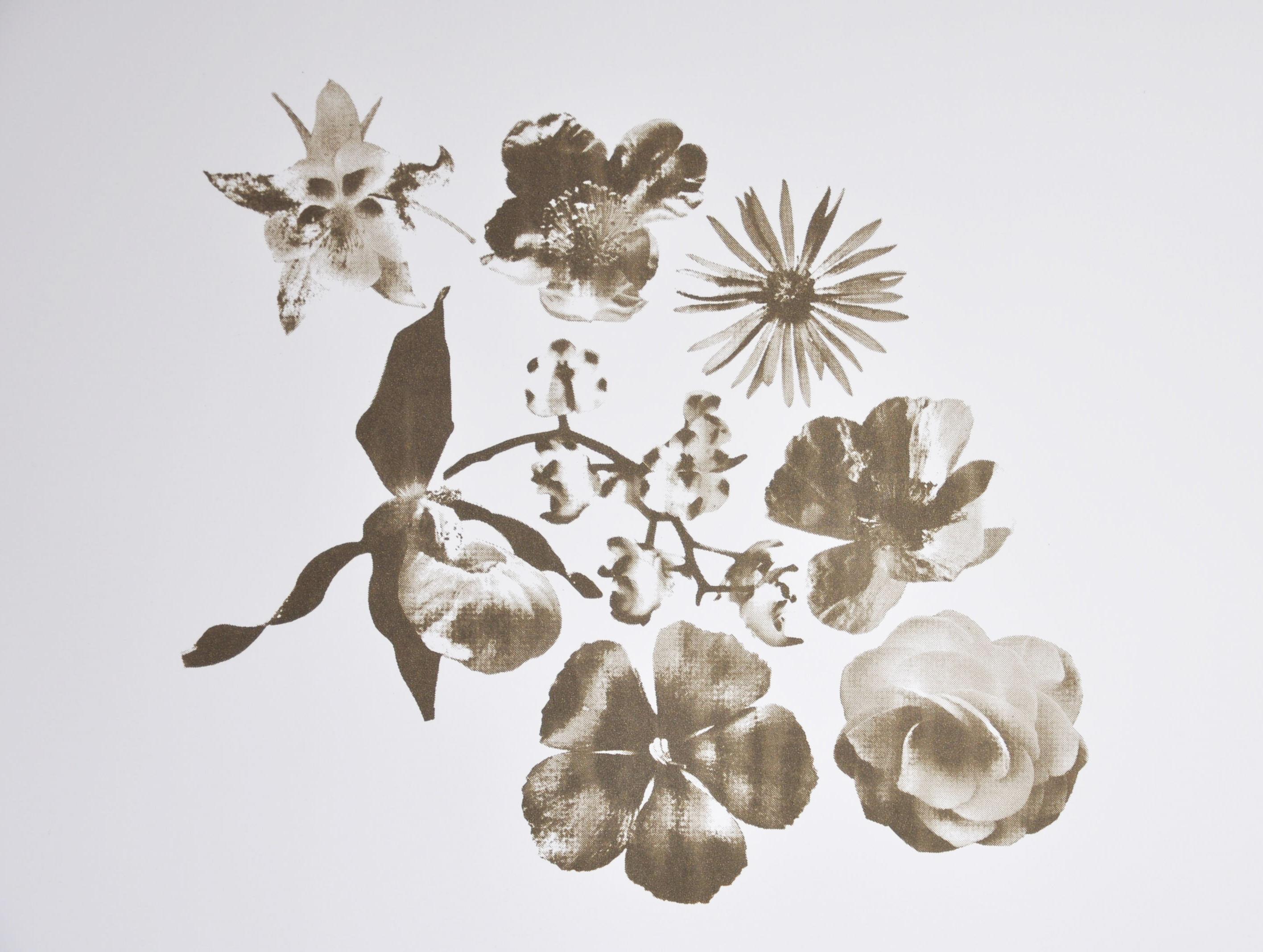 Flowers, sérigraphie à l'huile de vidange@(100 x 70 cm)
