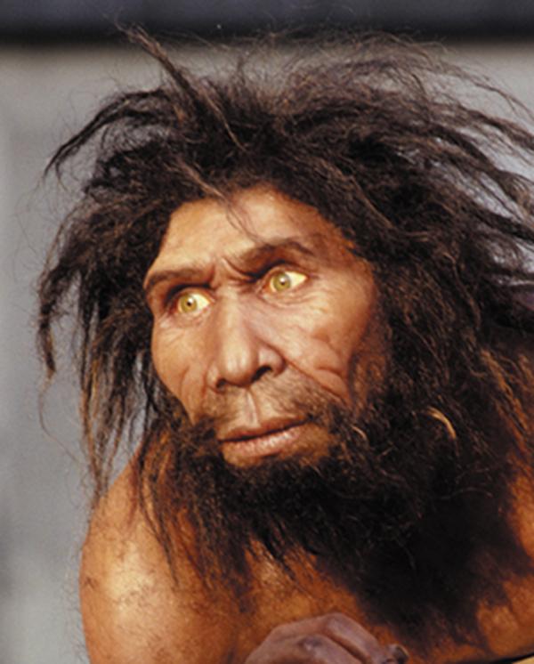 Homme de Néanderthal
