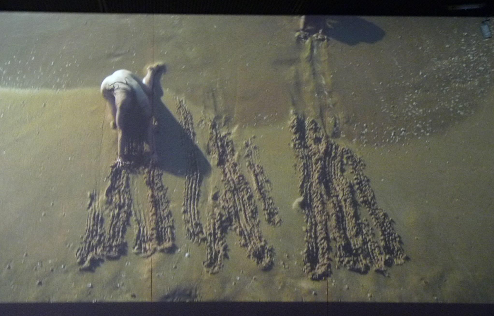 Mermaids@(Erasing the Border of Azkelon), vidéo