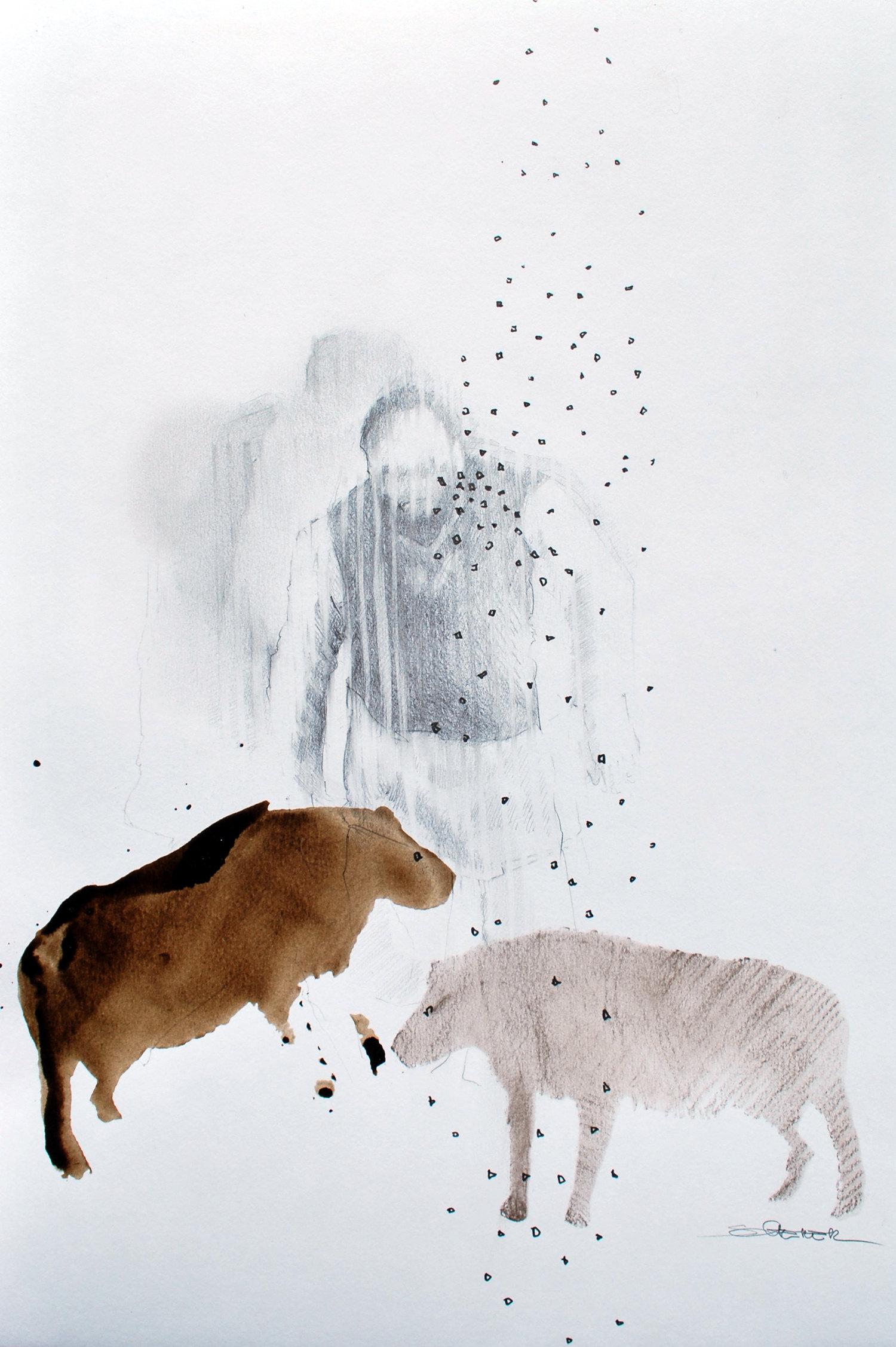Série Hyènes, crayon et encre sur papier@(29.7 x 42 cm)